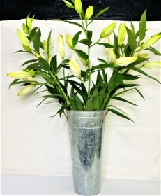 Lily Bunch (white)